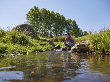 catchment river