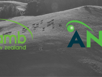image of ANZCO logo and B+LNZ logo
