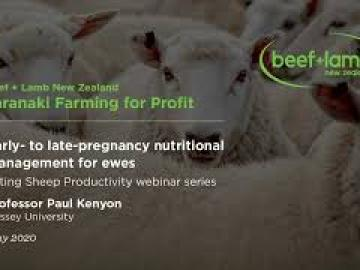 Early- to late-pregnancy nutritional management with Professor Paul Kenyon, Massey University