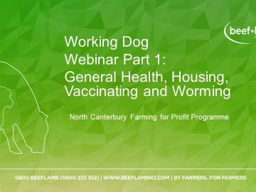 cover page for Working Dogs webinar