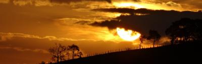 Image of golden sunset over farm