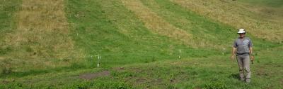 deferred grazing
