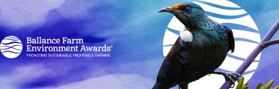 BFEA awards