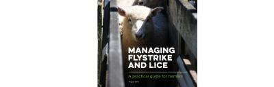 Flystrike book
