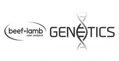 B+LNZ Genetics